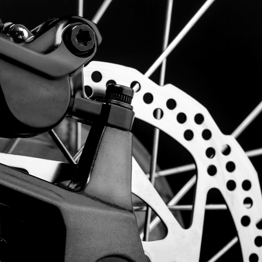 Service für Dein Fahrrad in Wittlich bei Trier